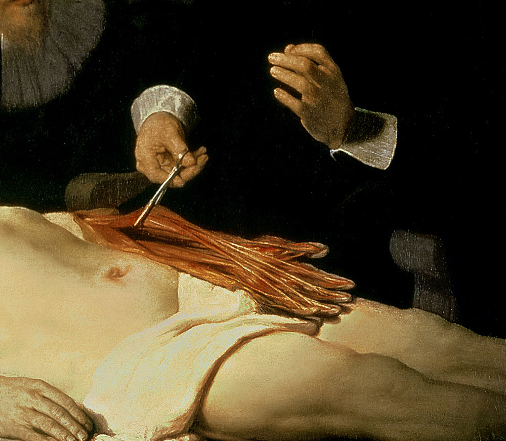 The Anatomy Lesson Of Dr Nicolaes Tulp Detail Community